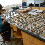 Holly sitting at lab table with bone fossils